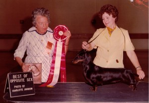 CH Rose farms Choo Choo winning Best Opposite Sex to Breed at the 1978 DCA in Kansas City under Thirza Hibner with Hannelore Heller handling her.