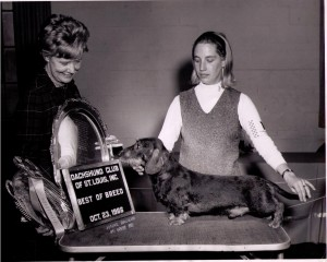 CH Pondwicks Hobgoblin winning BB at DC of St Louis under Judge Pat DeBrun for owner Dee Hutchinson - 1967